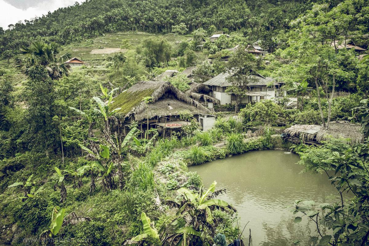 Casas de bambu, madeira e palha, vista para o verde da floresta, viveiro de peixes, agricultura doméstica e criação de sapos para alimentação. Ingredientes da vida calma da montanha que os Daos fazem questão de preservar.